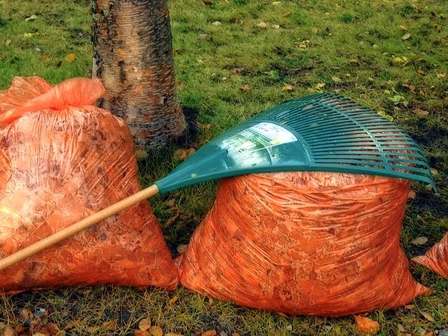 wybór odpowiednich narzędzi do prac ogrodowych