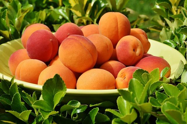 skuteczne zwalczanie chorob brzoskwiń