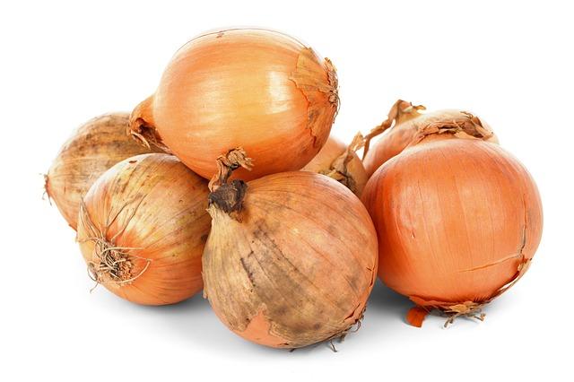 amatorska uprawa cebuli