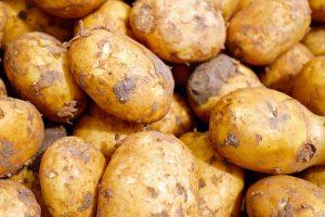ochrona ziemniaków przed grzybami