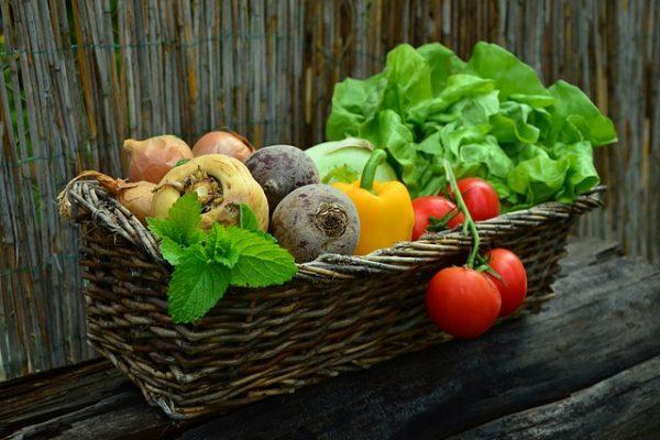 ochrona warzyw przed chorobami